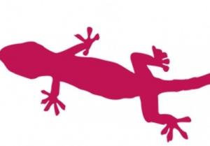 zip_zap_zop_lizard_web_300_209